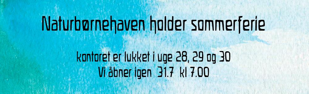 top_info-afen-1-3